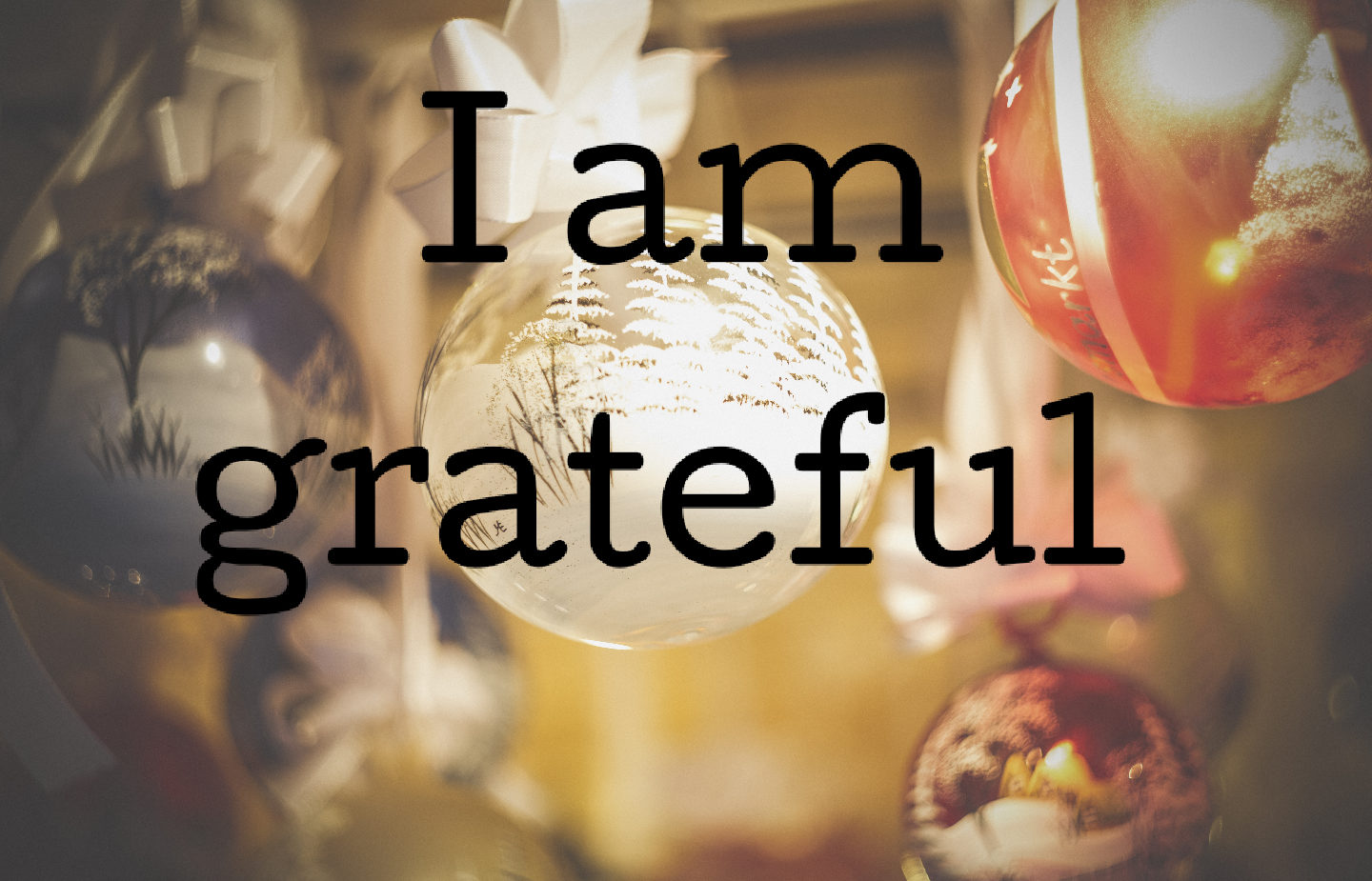 Today, on Christmas Day, I am grateful [028]